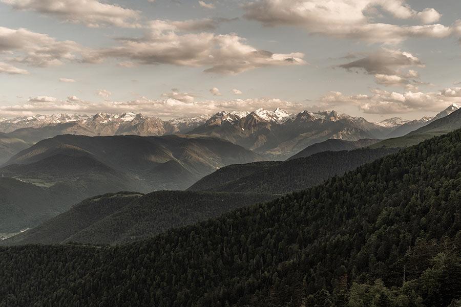 WildSpoons un atelier artisanal de fabrication de cuillères en bois situé dans les Pyrenées